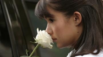 medium_rose_blanche.2.jpg