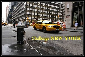 Challenge-new-york-en-litterature---well-read-kid.jpg